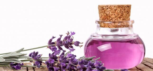 I molteplici benefici dell'olio essenziale di lavanda
